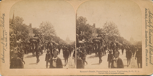 dc_elephant_walk_1894