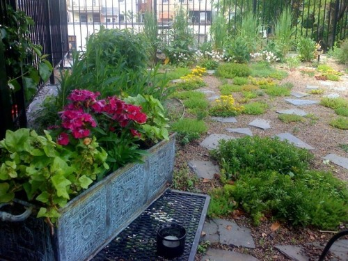 green roof_after 2