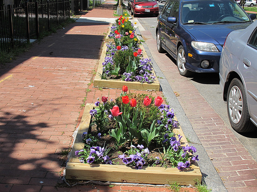 flower_boxes
