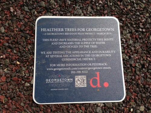 georgetown_tree_plaque