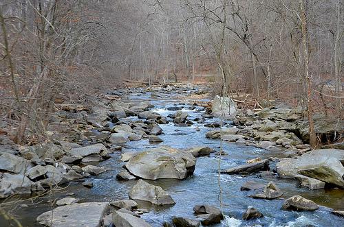 rock_creek_park_clean_up