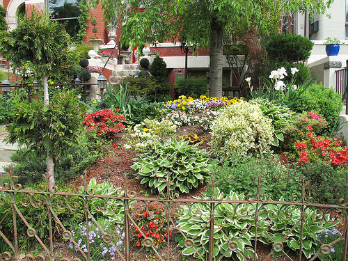 columbia_heights_garden