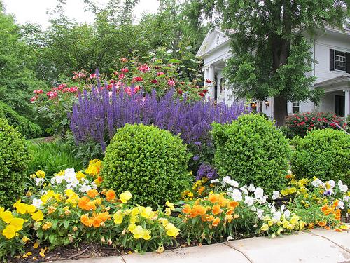 garden_mt_pleasant