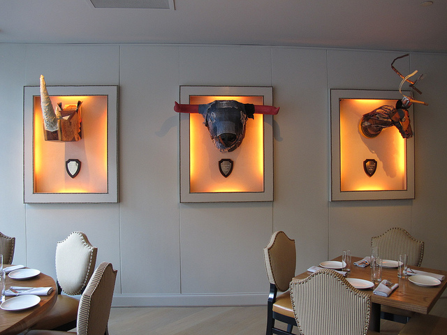 Teddy_bully_bar_mounted_wall_art