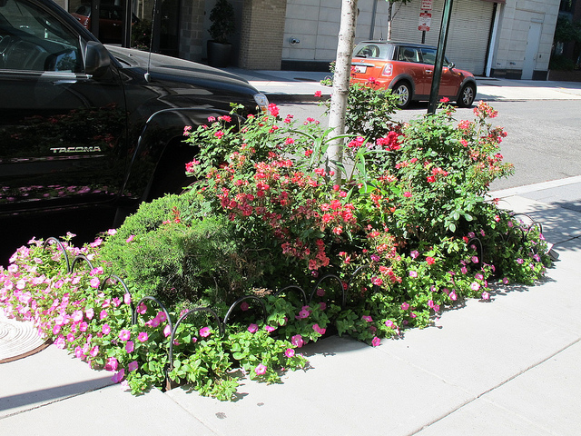 curb_garden_boxes_14th_and_church