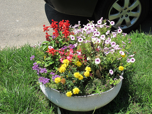 curbside_tire_conversion_flowers_petworth