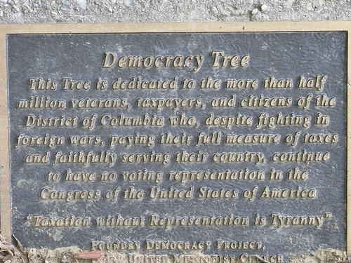 democracy_tree_plaque