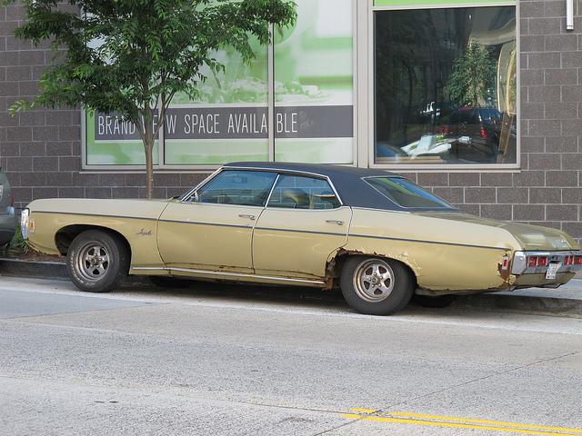 rusty_impala