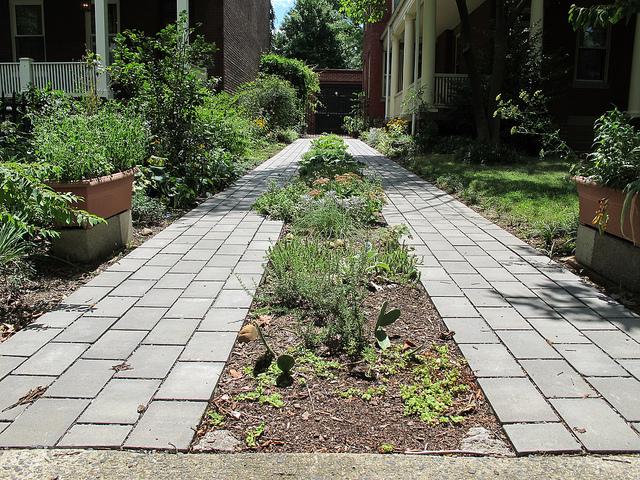 driveway_garden_capitol_hill