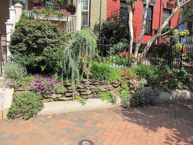 garden_popville