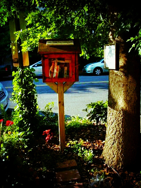 little_free_library_summer_reading_recs