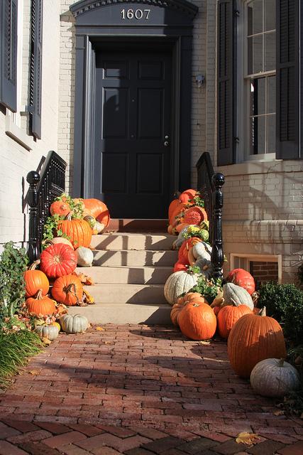 pumpkin_path