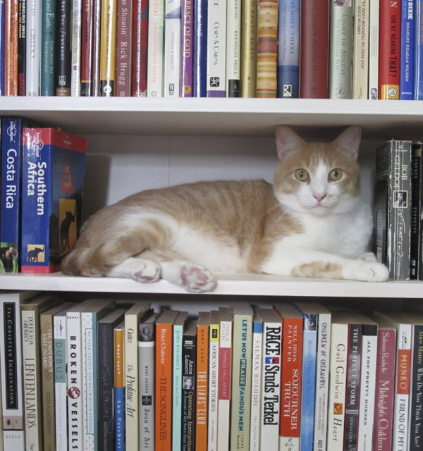 Leo-books