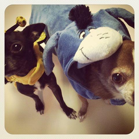 Hef & Mikayla Halloween 2013