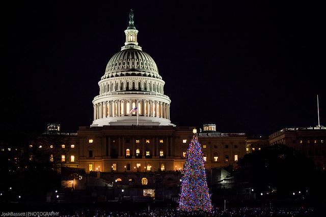 capitol_christmas_tree_lighting