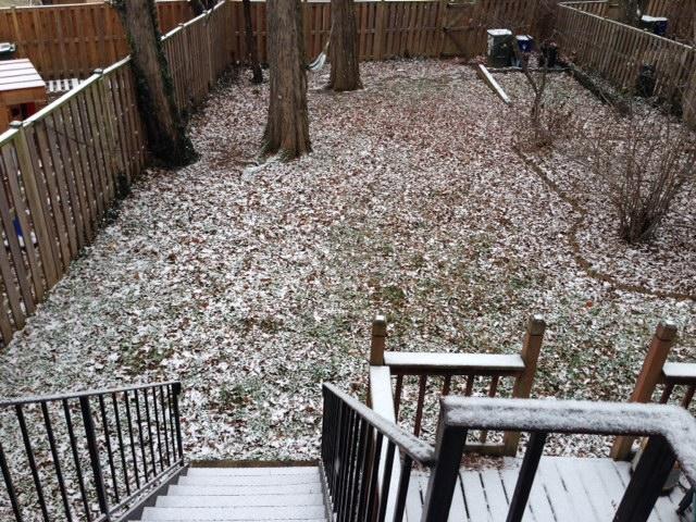 snow_petworth_dc