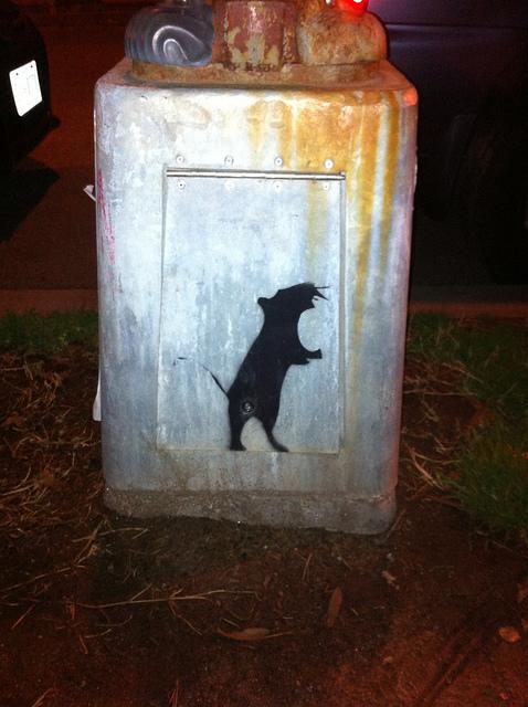 rat_legislation_dc