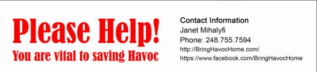 havoc_lost