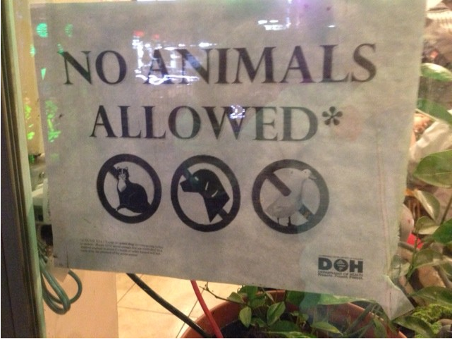 no_animals