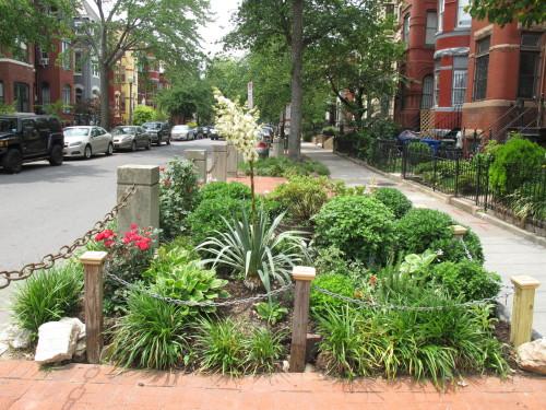 curb_garden