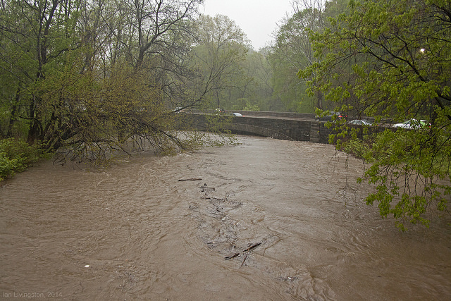 rock_creek_flooded