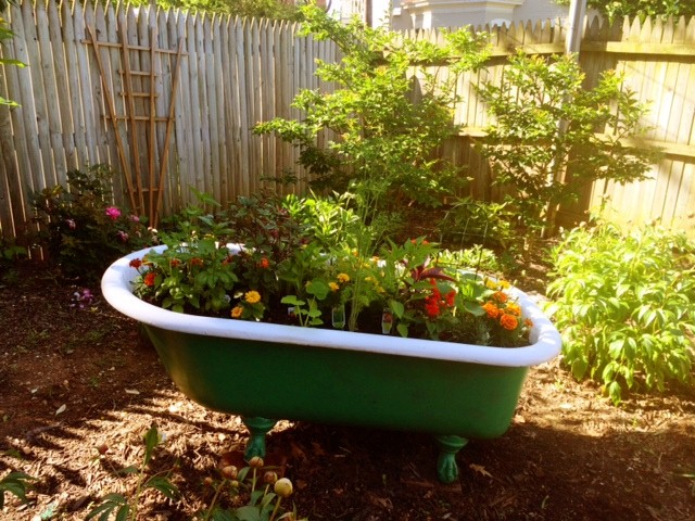 bathtub_garden