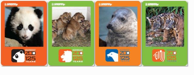 metro_zoo_cards
