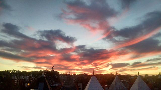 beautiful_dc_sunrise