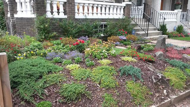 petworth_garden