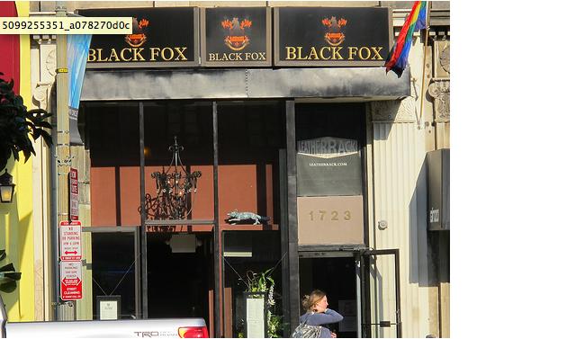 black_fox_lounge