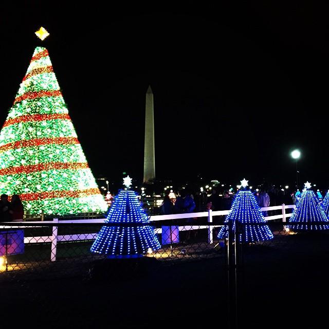 christmas_trees