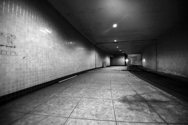 dupontunderground-platform-zwifkrknrq