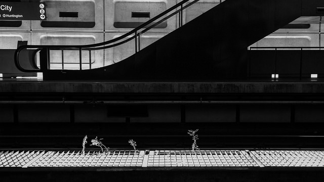 dc_metro_track_work