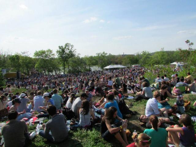 Kingman_island_festival