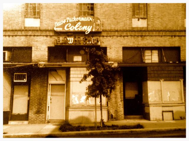 colony_club