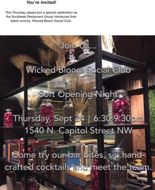 wicked bloom soft opening truxton circle