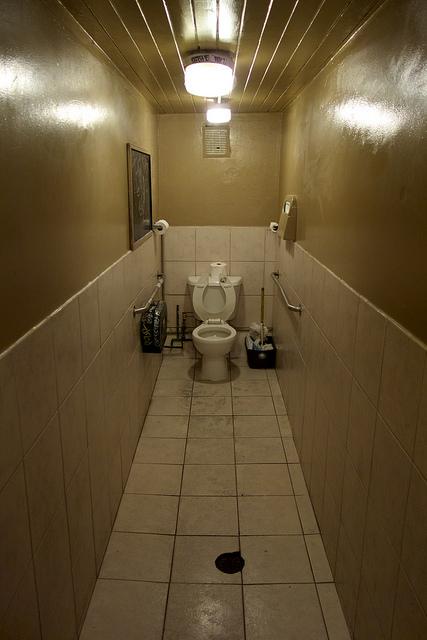 toilet rats