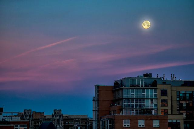 moon-popville