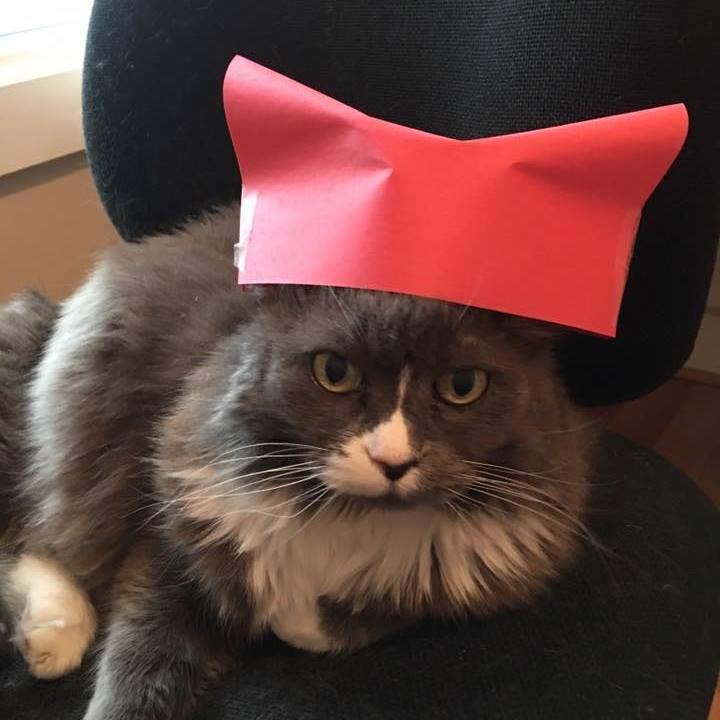 persephone_pussyhat