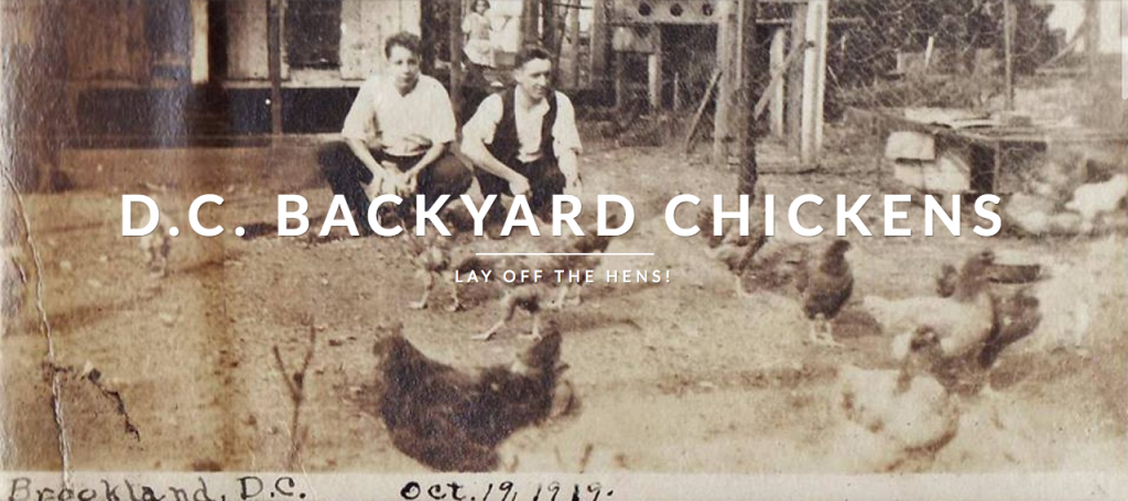 brookland chicken