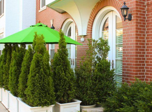 washington-dc-real-estate-homezen