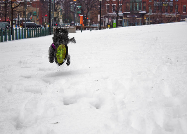 PoPville » Feds on 2 Hour Delay (and option of Telework