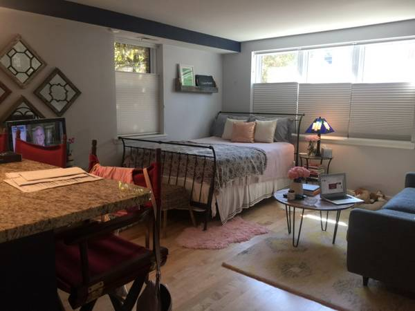 This Is A Newly Renovated Modern And Large Studio Apartment In The Bloomingdale Neighborhood Of Northwest Washington D C Massive Walk Closet