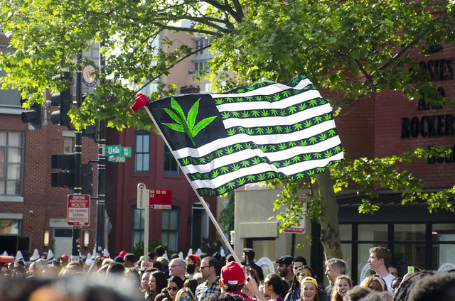 """Norton Introduces Bill to Permit Marijuana Use in Public Housing, Will Speak at National Cannabis Festival Saturday"""